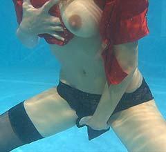 wp0006_secretarys_wet_delight_gallery